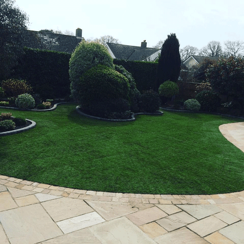 curvy lawn made from turf with island bed of evergreens