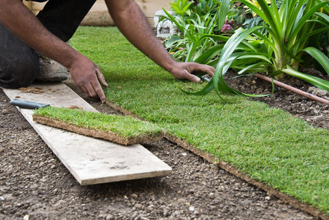 professional turf laying service