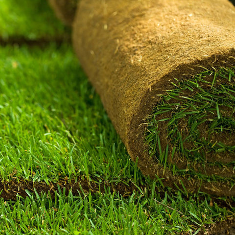 roll of gold leaf premium turf from wimborne turf dorset