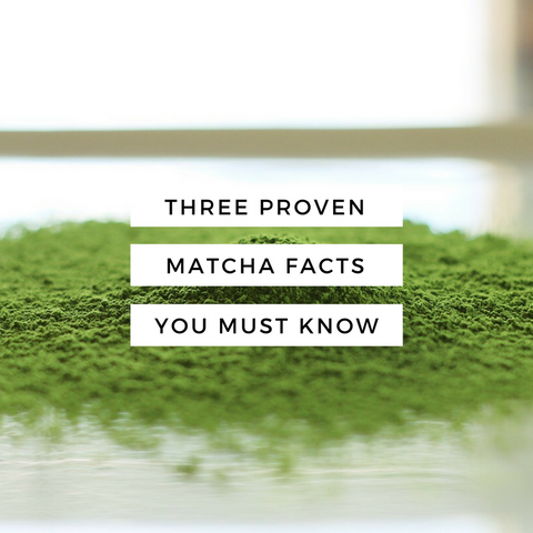 Three Proven Matcha Facts You Must Know