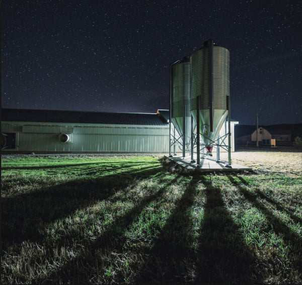The Emerging Trend of LED Lighting in the Farming Industry
