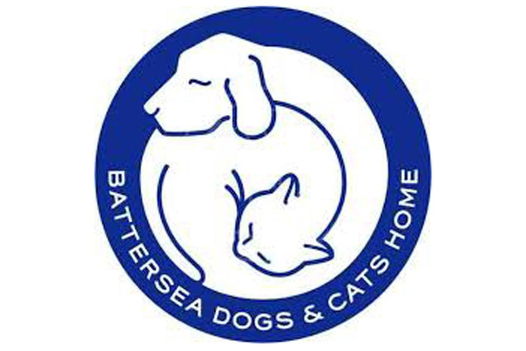 10 Facts About Battersea Dogs Cats Home Whistlefish