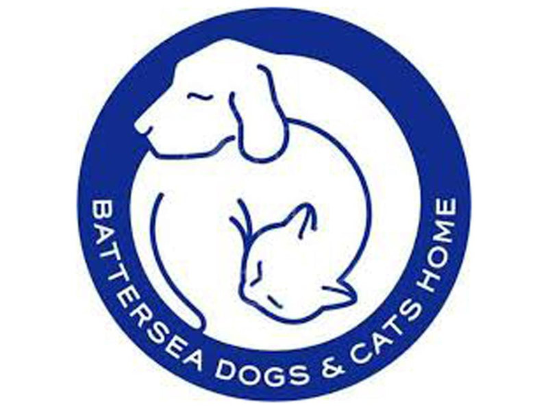 10 Facts about Battersea Dogs & Cats Home