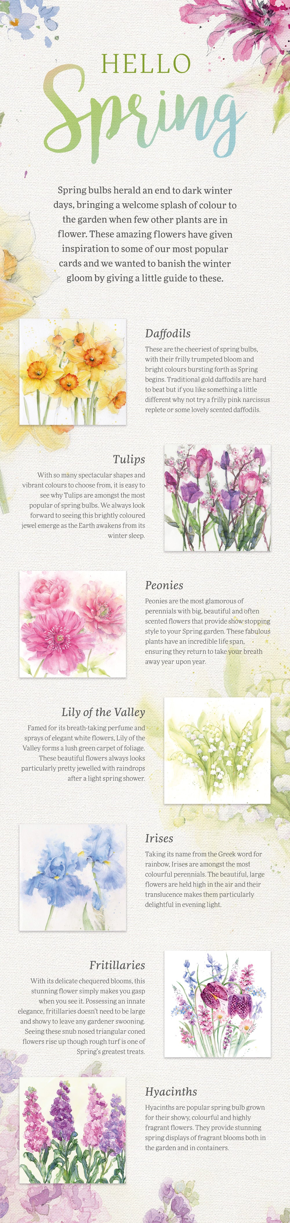 Hello Spring The Whistlefish Guide To Spring Flowers