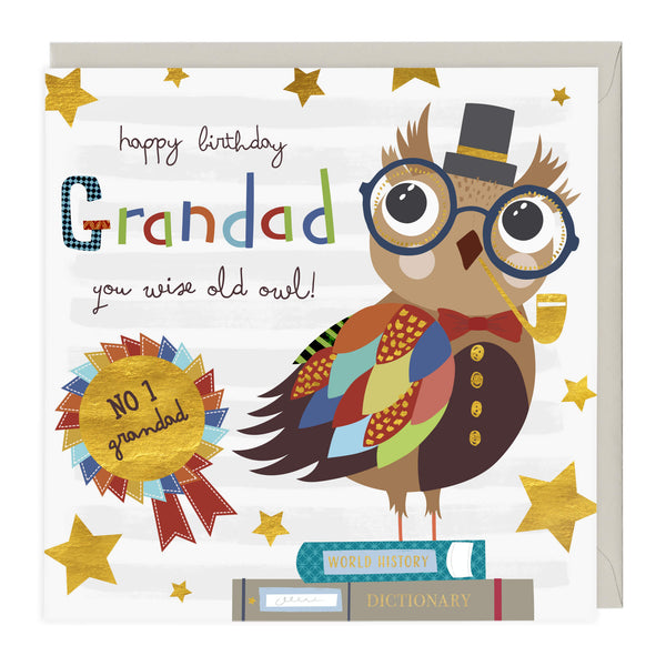 Wise Old Owl Grandad Birthday Card