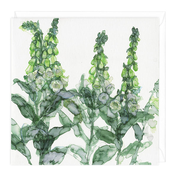 Foxgloves Art Card