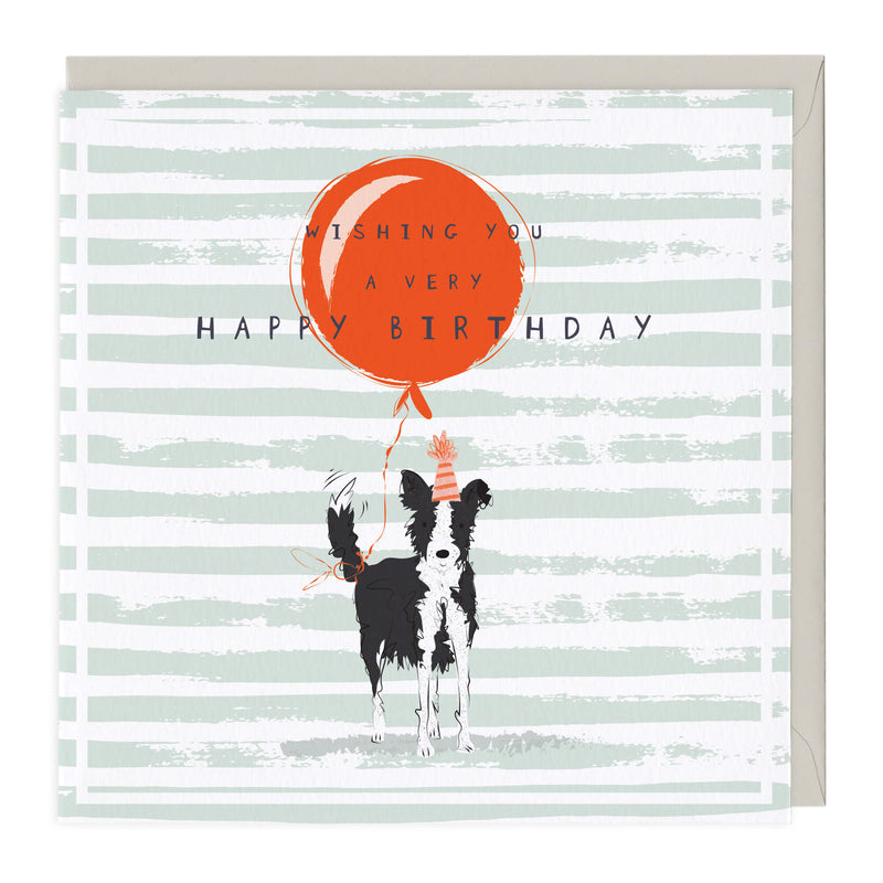 Molly the Collie Birthday Card