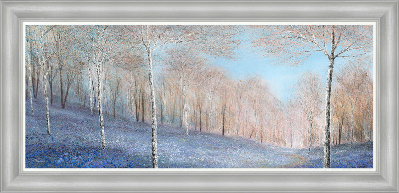 The Spring Woodland Awakes Framed Print