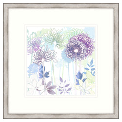 Allium Garden Framed Print