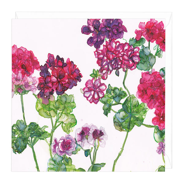 Geraniums and Pelargoniums Art Card
