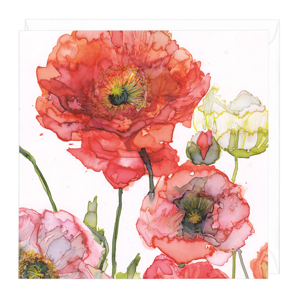 Valiant Poppies Art Card