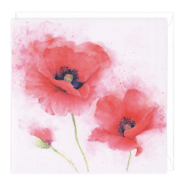 Papaver Rhoeas Floral Art Card