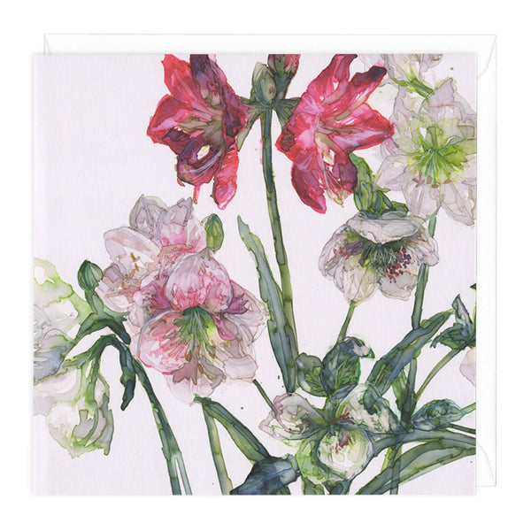 Mixed Amaryllis And Hellebore Floral Art Card