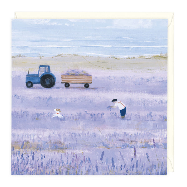 Lavender Fields Art Card