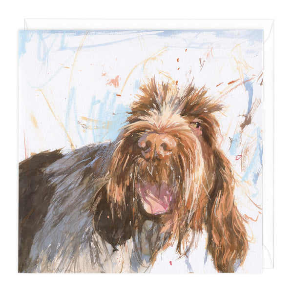 Spinone Art Card