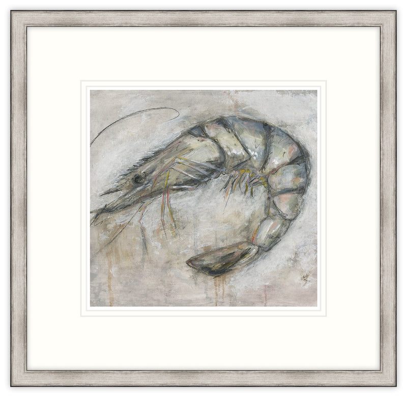 Shrimp Framed Print