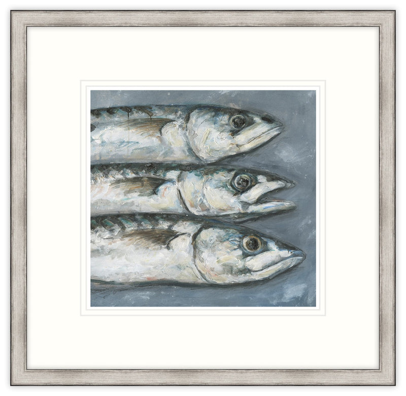 3 Mackerel Framed Print