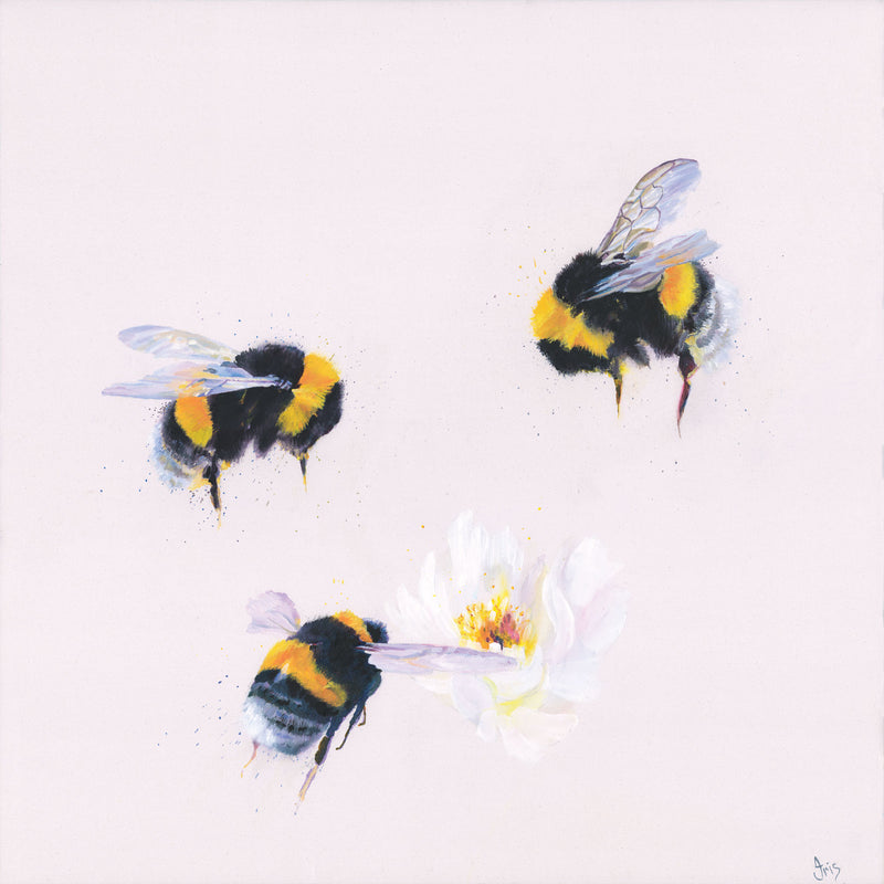 Beesey Morning Art Print