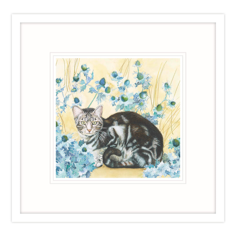 Bleu Kitten Framed Print