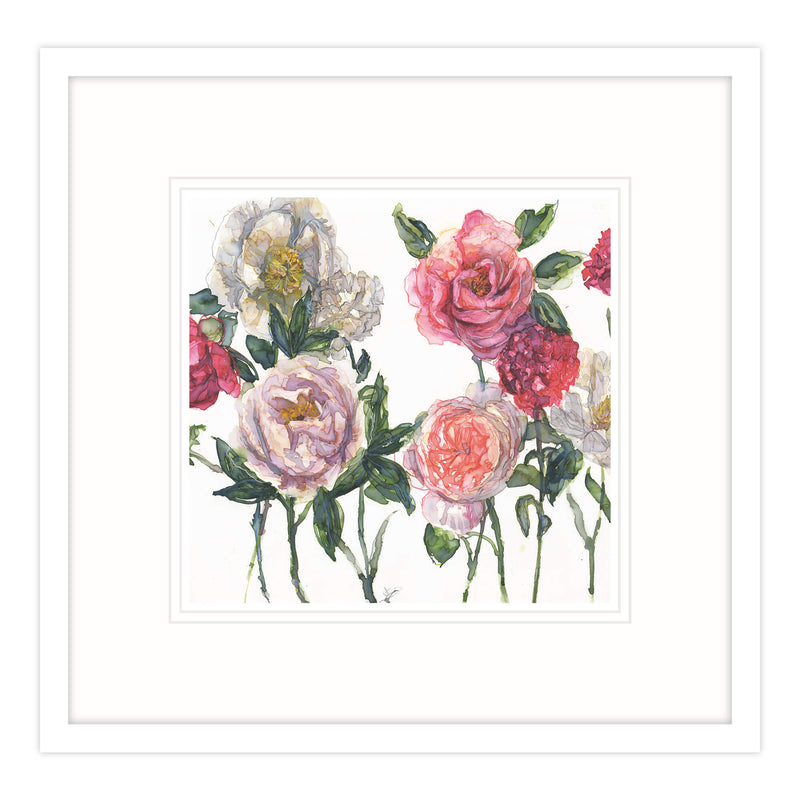 Mixed Peonies and Rose With Carnations Framed Print
