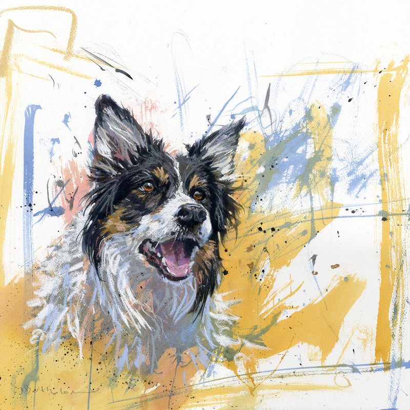 Tri-coloured Collie Art Print