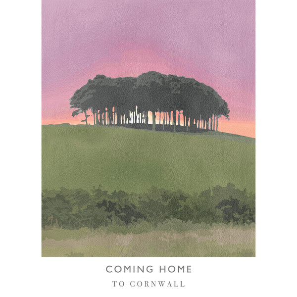 Coming Home 2 Art Print