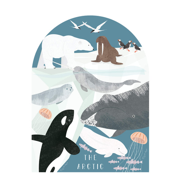 The Artic Art Print