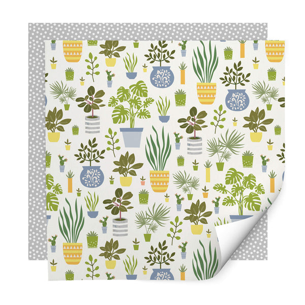 House Plants Wrapping Paper Pack