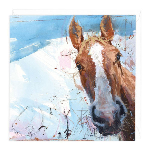 Horse On Blue Greeting Card