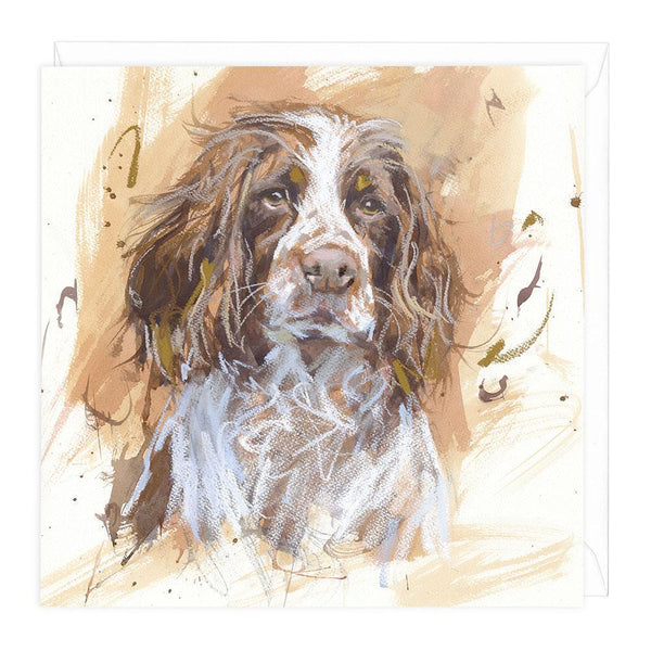 Springer Spaniel I Art Card