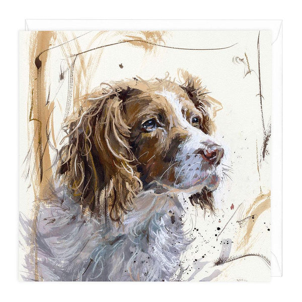 Springer Spaniel II Art Card