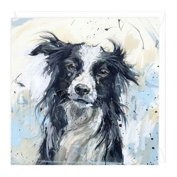 Border Collie Art Card