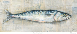 Cornish Mackerel Art Print