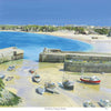 Overlooking Newquay Harbour Art Print