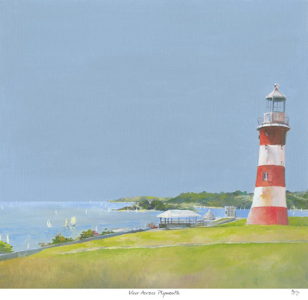View Across Plymouth Art Print