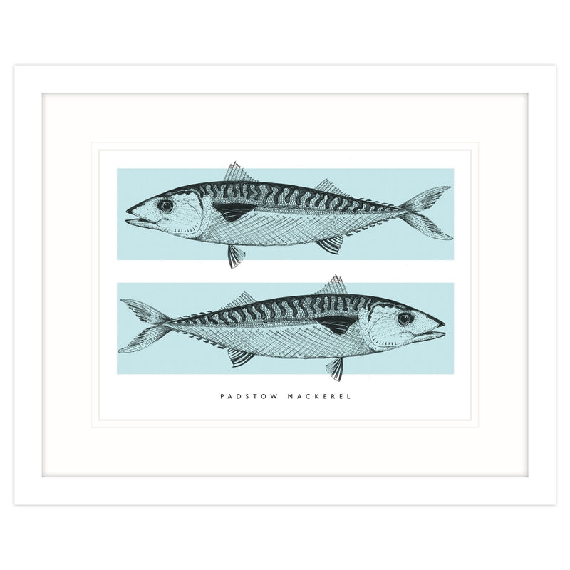 Padstow Mackerel Framed Print