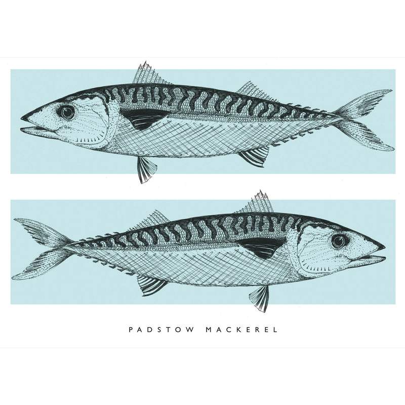 Padstow Mackerel Art Print