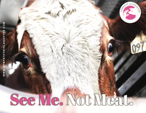 "Cow ""See Me. Not Meat"" Poster"