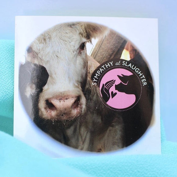 Sympathy Cow sticker