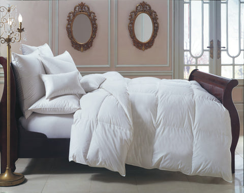 Bernina 650+ Hungarian White Goose Down Comforter