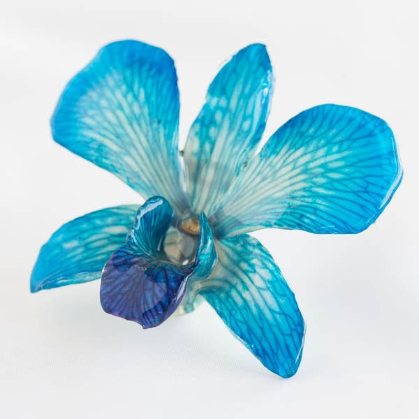 Blue White Dendrobium Orchid pin.