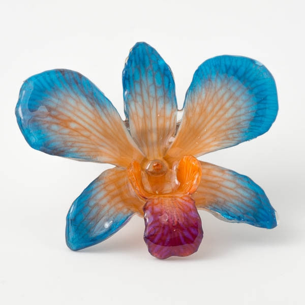 Blue-Orange Dendrobium Orchid pin.