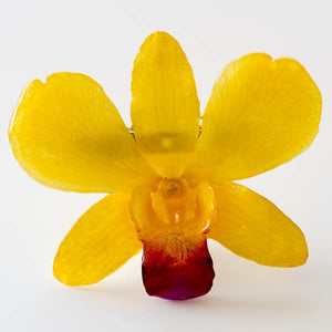 Yellow-Purple Dendrobium Orchid pin.