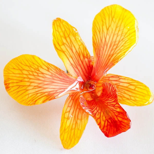 Yellow-Orange Dendrobium Orchid pin.
