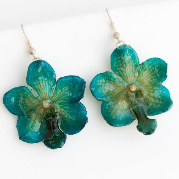 Blue Vasco orchid earrings