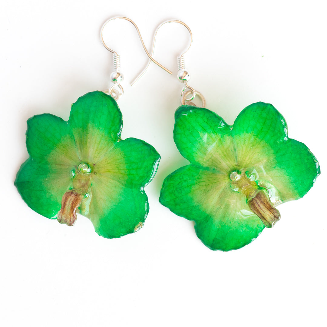 Flower Earrings Green Vasco orchid earrings