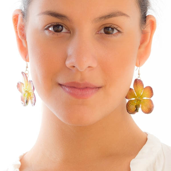 Purple Green Vanda real orchid earrings