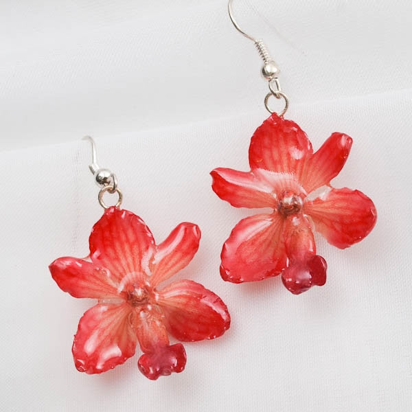 pink rhynchocentrum real orchid earrings