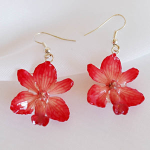 Flower Earrings Pink Rhynchocentrum Real Orchid Earrings