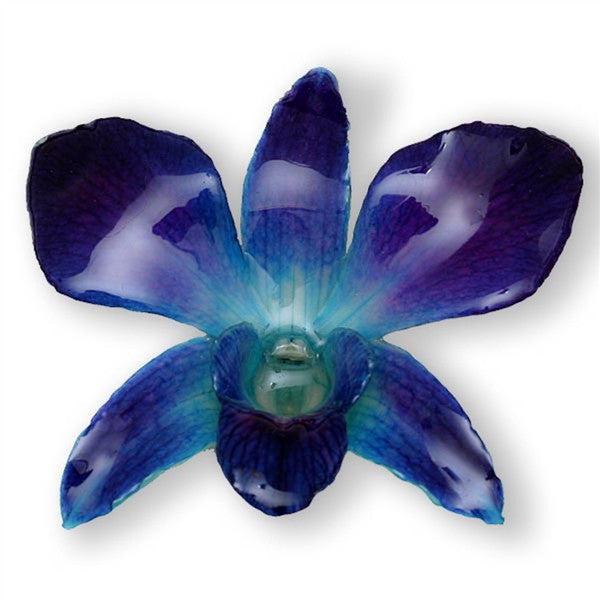Blue Dendrobium Orchid pin.